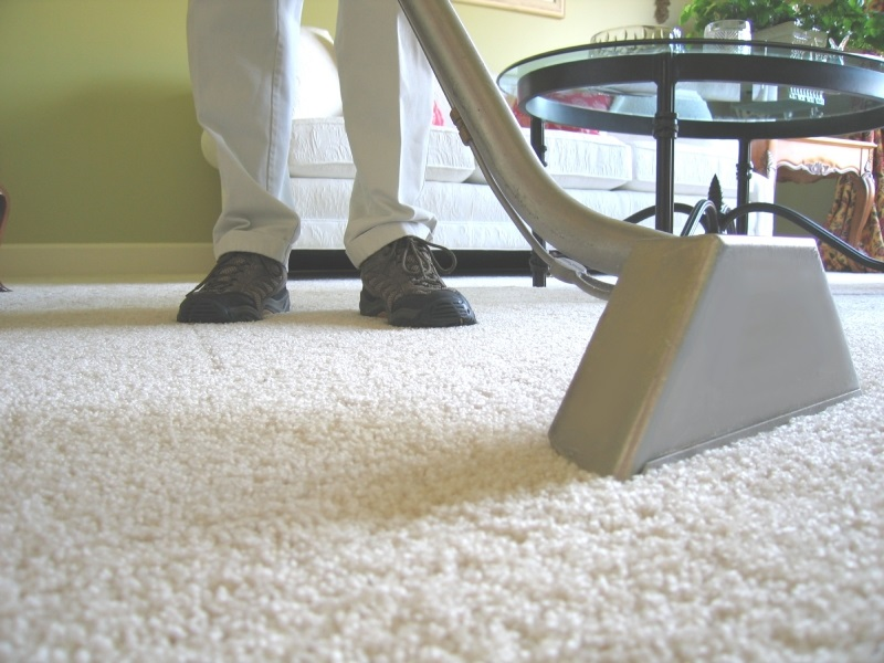 Signs That Make You Feel About The Growth Of Mold On Your Carpet